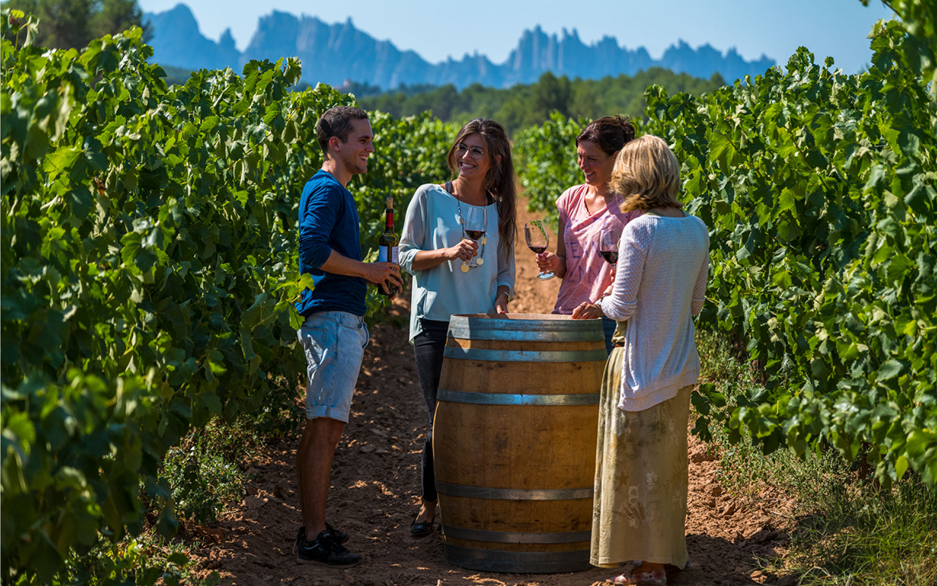 Wine tourism proposals of the wineries