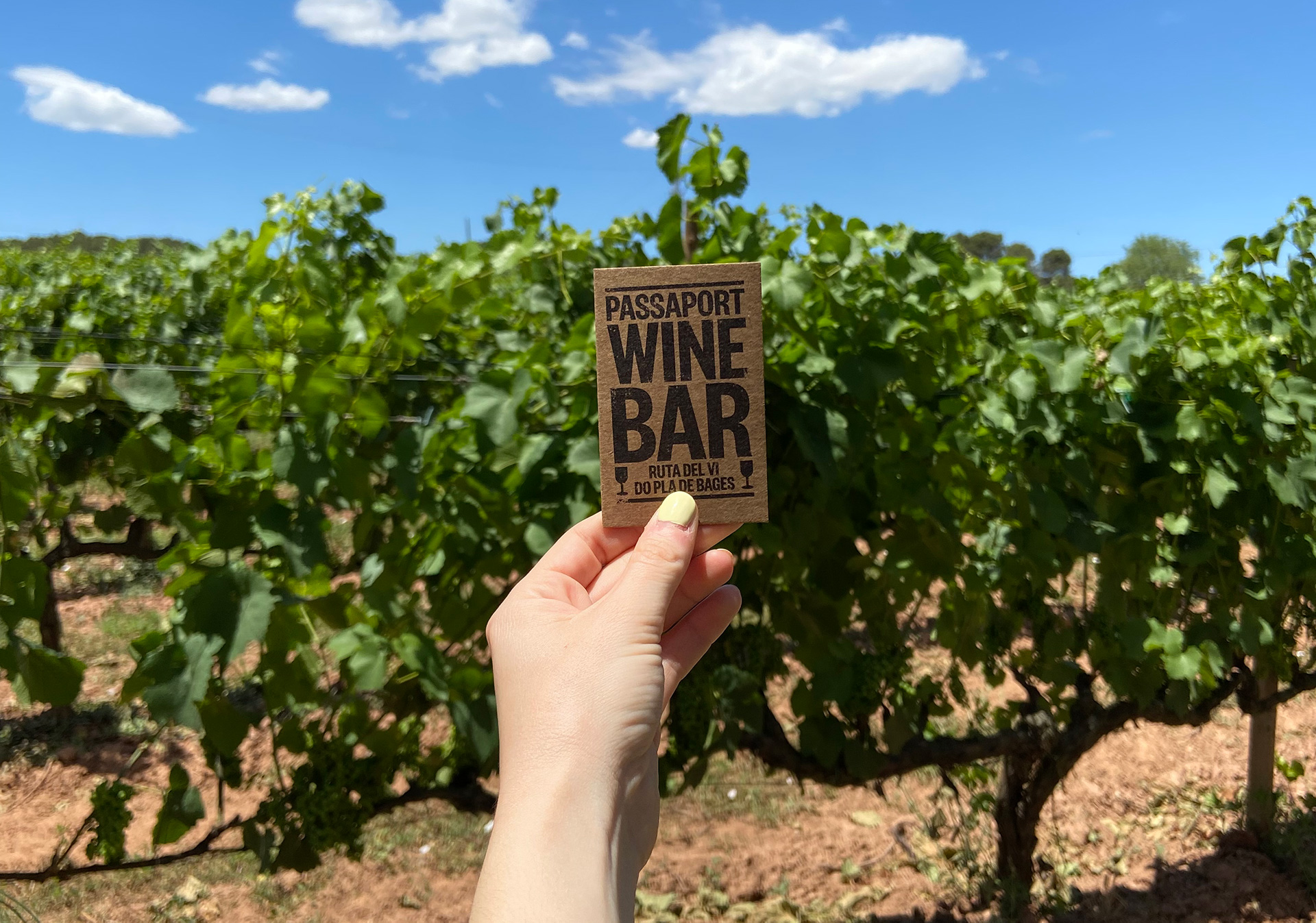 Passaport Wine Bar